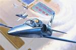 TR05804  L-39C Albatro 1:48 kit